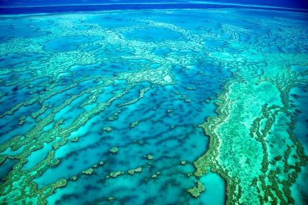 グレート ・ バリア ・ リーフのサンゴ礁 写真素材