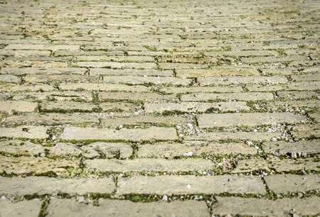 cobbles: Urban gray cobbles, overgrown with grass. The prospect ahead.