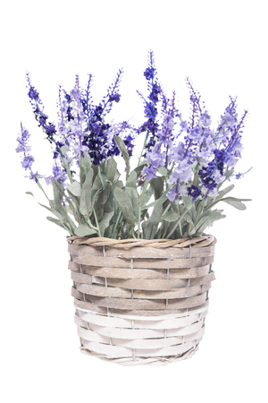 summer flowers: Basket with artificial flowers on a white background. Stock Photo