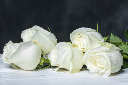 White roses on white boards and a dark background.