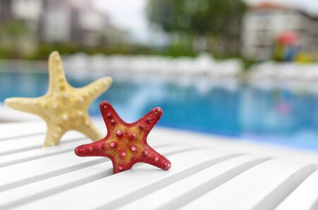 sripes: Beautiful starfish on a poolside lounger. Close-up.