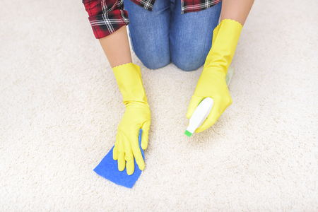 carpet clean: Female hands in gloves carpet clean the sponge and spray. Stock Photo