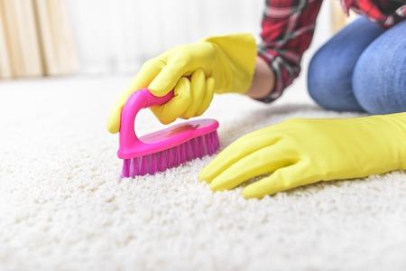 Female hands in gloves brush their carpet brush.