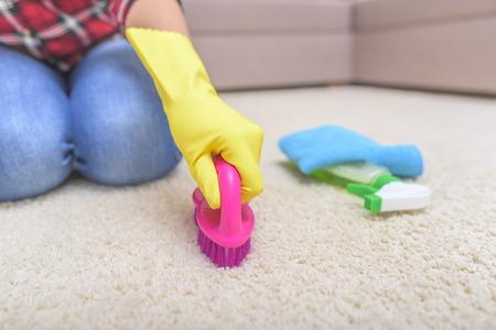 carpet stain: Female hands in gloves brush their carpet brush.
