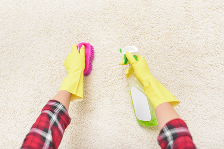 clean carpet: Clean the carpet brush and spray. Close-up. Stock Photo