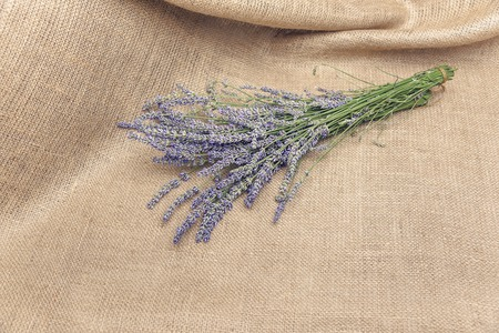lavendin: Bouquet of lavender on sacking. Place for placing of your text. Stock Photo