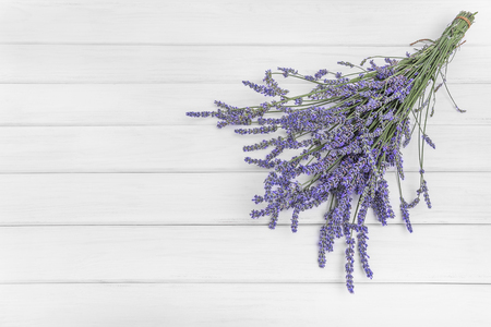 scuff: Bouquet of beautiful fresh lavender to white boards Stock Photo