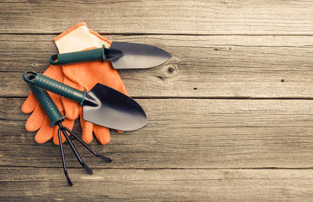 Garden tools and gloves on wooden boards.