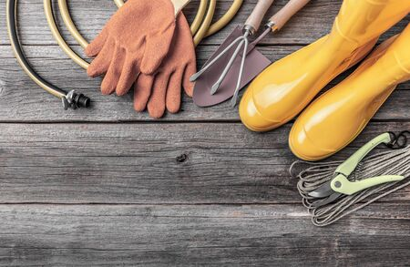 Garden tools and instruments on a wooden background. 스톡 콘텐츠