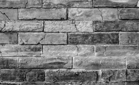 Gray brick wall as a background.