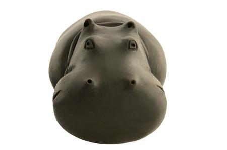 full face: wooden behemoth full face isolated on white