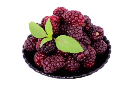 blackberries in a plate. isolated on white. decorated with green leaves Stock Photo