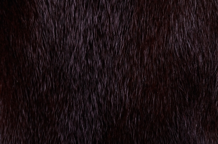 dark mink fur on a full