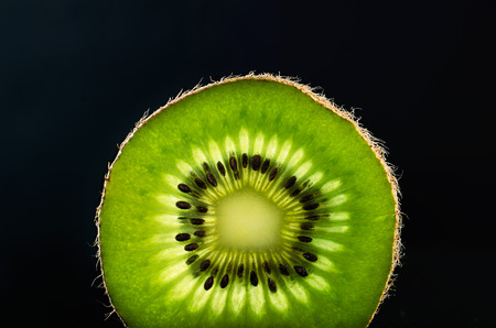 slice of kiwi fruit on a dark background horizontal. space for text