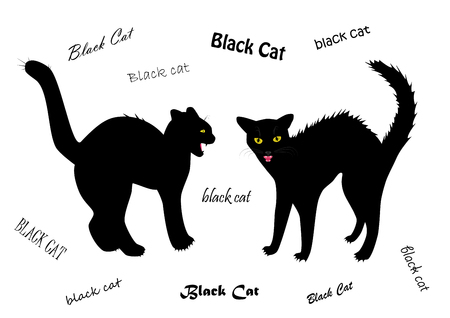 Two evil cats bared teeth isolated on the white background, text BLACK CAT written in different fonts