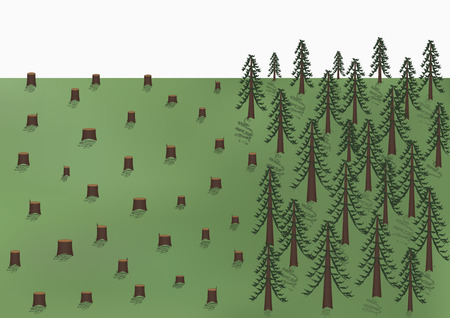 Deforestation landscape, big trees and a lot of stumps, vector illustration horizontal. Ilustração