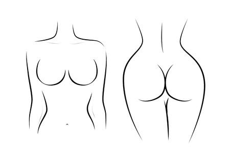 Contour de la figure féminine, vue avant et arrière isolée sur fond blanc, illustration vectorielle horizontale Vecteurs