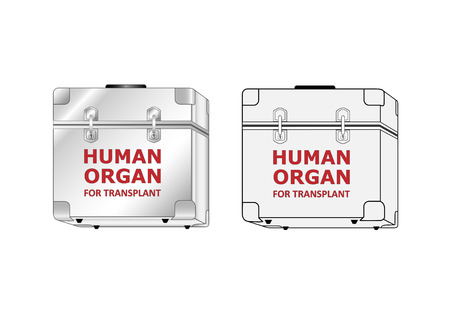 two boxes with human organ for transplant different styles isolated on the white background, horizontal vector illustration