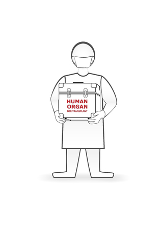 doctor holds in hands box with human organ for transplant isolated on the white background, horizontal vector illustration