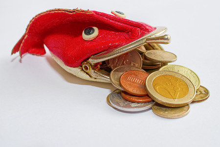 coins of Russia, Ukraine and the European Union fall out of the wallet-fish