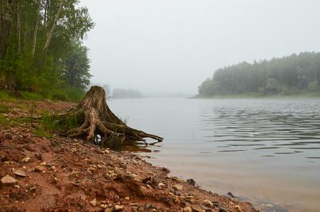 landscape morning fog over the lake Stok Fotoğraf