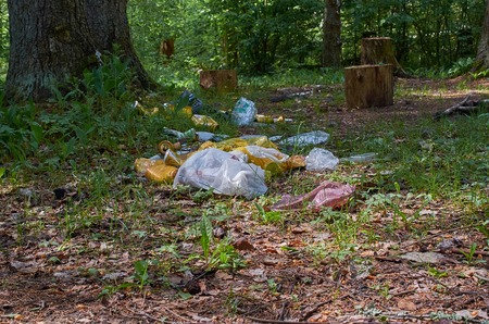 big pile of garbage in the forest Archivio Fotografico - 125432015