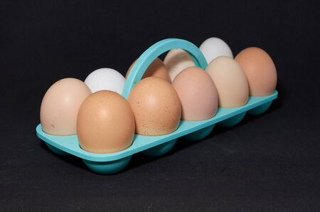 ten chicken eggs on a blue stand close-up on a black background Archivio Fotografico - 132120132