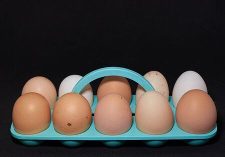 ten chicken eggs on a blue stand close-up on a black background