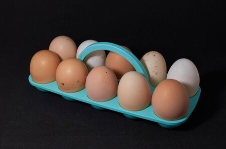 ten chicken eggs on a blue stand close-up on a black background Archivio Fotografico - 132120569