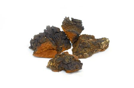 three pieces of wood birch fungus chaga isolated on a white background close up