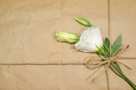 three white flowers tied with a rope to a cardboard background