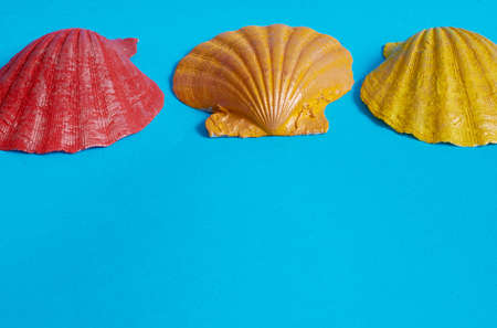 Marine layout. Three sea shells painted in red, yellow and orange on a blue background. Space for text Stok Fotoğraf