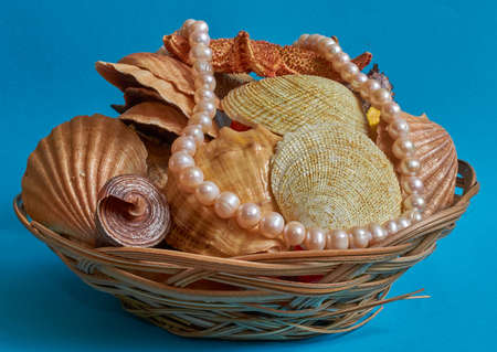 Many different shells and pearl beads in a basket on a blue background. Space for text