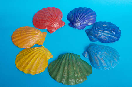 Marine layout. Seven shells, painted in the colors of the rainbow, lie on a blue background. Space for text