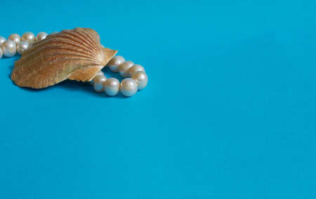 Marine layout. Shell and pearl beads on a blue background. Space for text Stok Fotoğraf