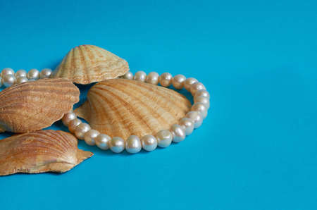 Marine layout. Several seashells and pearl beads on a blue background. Space for text Stok Fotoğraf