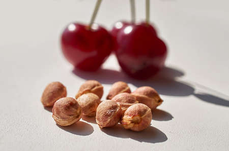 Red ripe cherry and lots of cherry pits on a gray textured background. Bright light, hard shadows. Macro Banque d'images