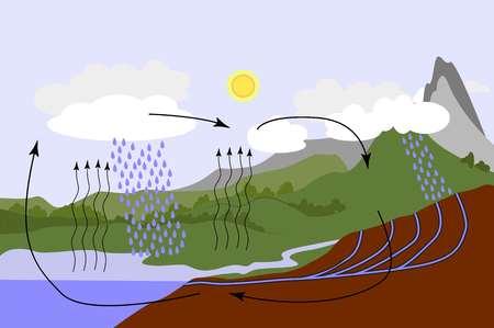 Il ciclo dell'acqua in natura. Precipitazione. Schema grafico del ciclo dell'acqua, illustrazione isometrica vettoriale con corpi idrici e rilievo geologico.