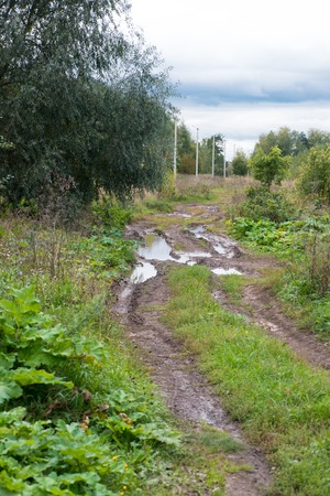 The road in puddles, ruts and potholed. Bad, broken road.