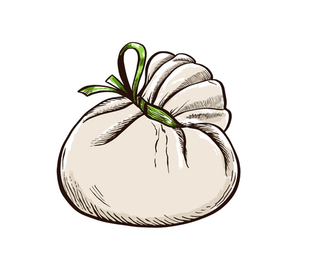 Cheese Burrata hand drawn engraving. Colored Vector illustration.