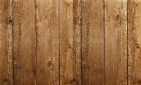 Warm wooden texture. Rustic background.