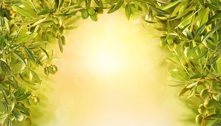 Beautiful background with olives at sunrise in garden. Olives branches on olive tree on yellow background. Reklamní fotografie