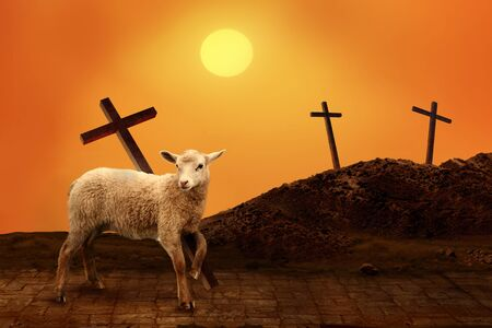Jesus. Lamb of God. The atoning sacrifice of Jesus Christ