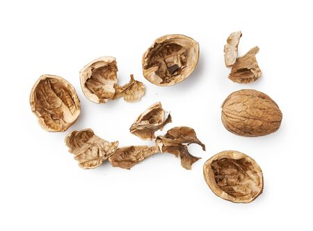 Walnut shells isolated on white background. Top view of nuts shell Stock Photo