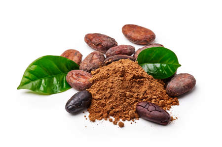 Cocoa beans with cocoa leaves and cocoa powder isolated on white 版權商用圖片