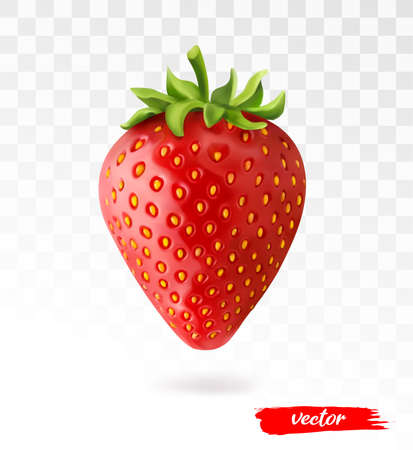 Red berry strawberry isolated on white transparent background. 3d realistic vector illustration of strawberry. Vectores