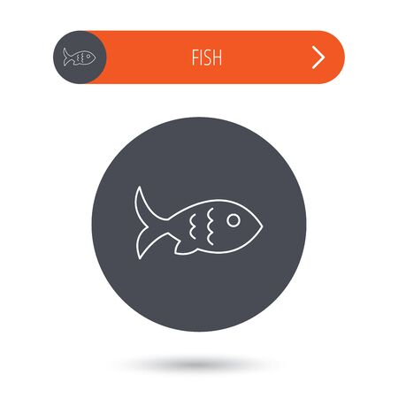 fin: Fish with fin and scales icon. Seafood sign. Vegetarian food symbol. Gray flat circle button. Orange button with arrow. Vector