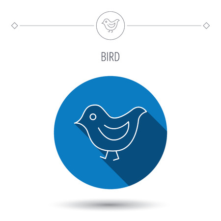 fowl: Bird icon. Chick with beak sign. Fowl with wings symbol. Blue flat circle button. Linear icon with shadow. Vector
