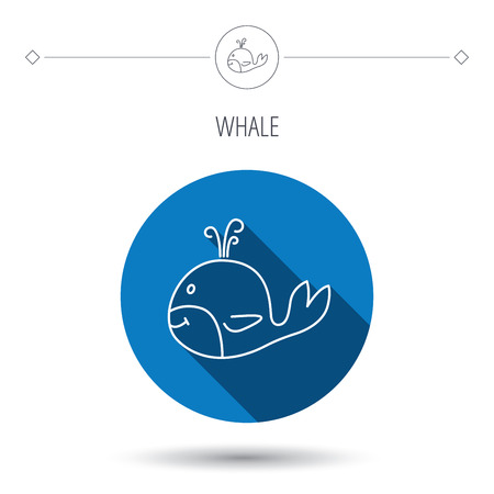 cetacea: Whale icon. Largest mammal animal sign. Baleen whale with fountain symbol. Blue flat circle button. Linear icon with shadow. Vector Illustration