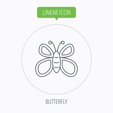 lepidoptera: Butterfly icon. Flying lepidoptera sign. Dreaming symbol. Linear outline circle button. Vector